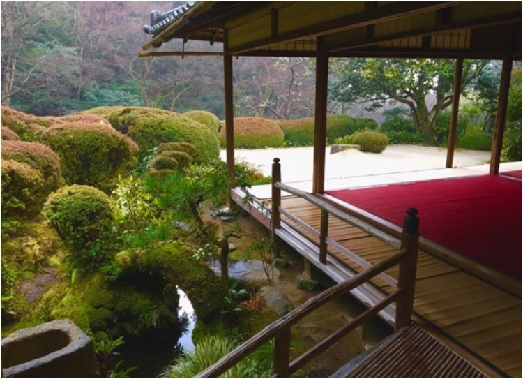 京都一人旅♥_5