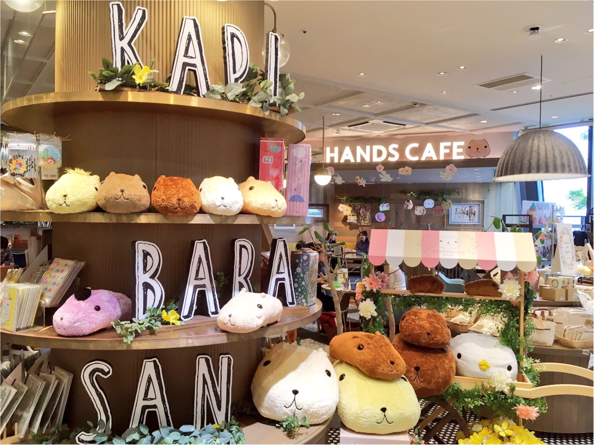 『KAPIBARASAN×HANDS CAFE』@東急表参道原宿店♡りぃイチオシメニューのご紹介(∗•ω•∗)♡_1