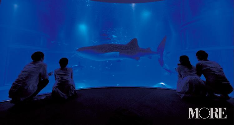 世界最大級の水族館『海遊館』のおすすめは? 大阪府大阪市女子のリアル【ニッポン全国ご当地OLのリアルな生態リサーチ】_3_2