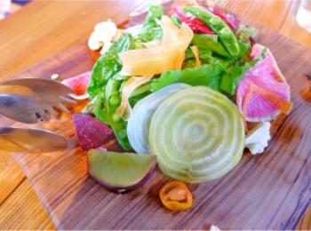 混まない穴場!カラフルで新鮮な鎌倉野菜が食べられるおしゃれレストラン♡