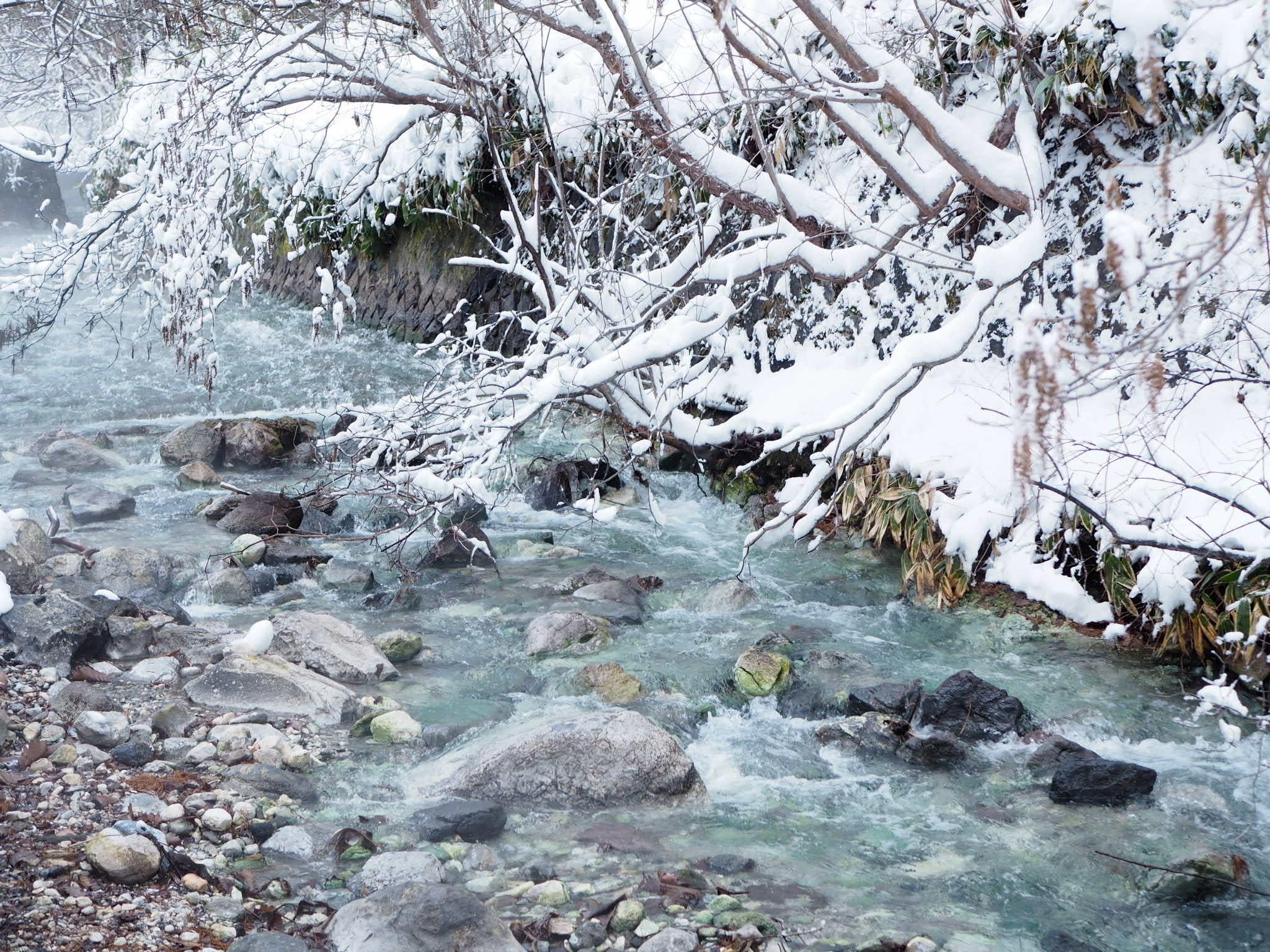 【草津温泉】湯もみショーと温泉が湧き出る西の河原公園♡_3