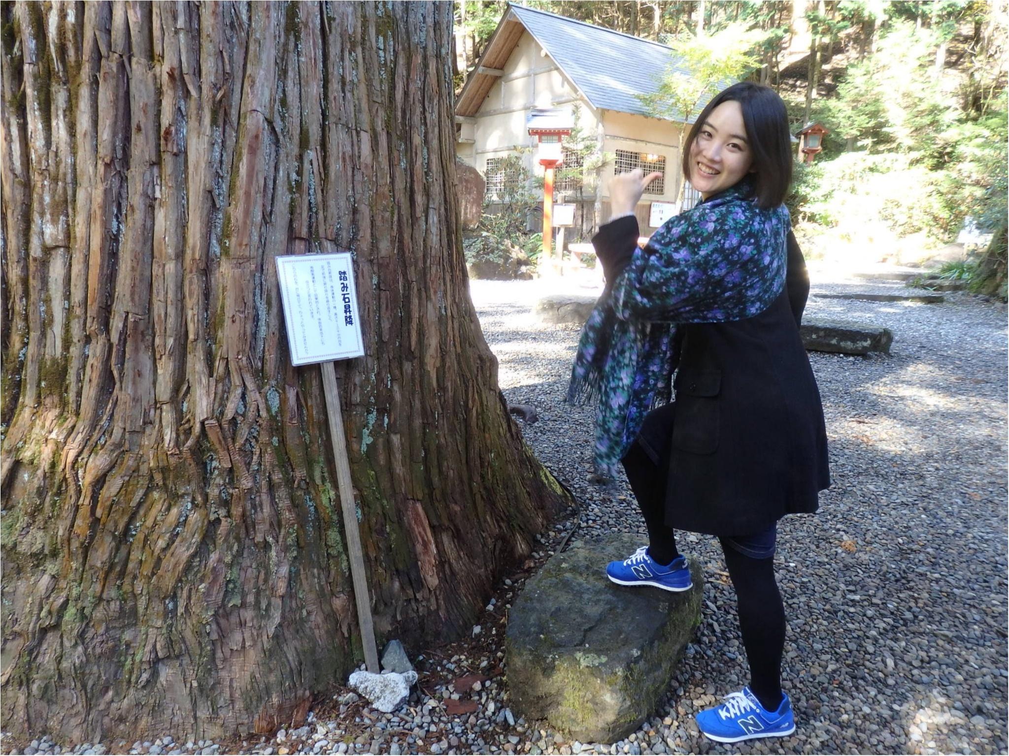 【知らなかった!】日本一楽しめる神社へ潜入してみた_50