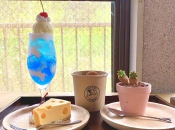 【映えスイーツ3選】『青空ゼリーポンチ』『ネズミさんのチーズケーキ』『鉢植えティラミス』