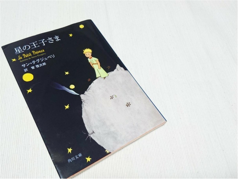 【おすすめの本】ふと、立ち止まってしまった時に、おすすめの一冊 ♪『星の王子さま ( The Little Prince )』_3