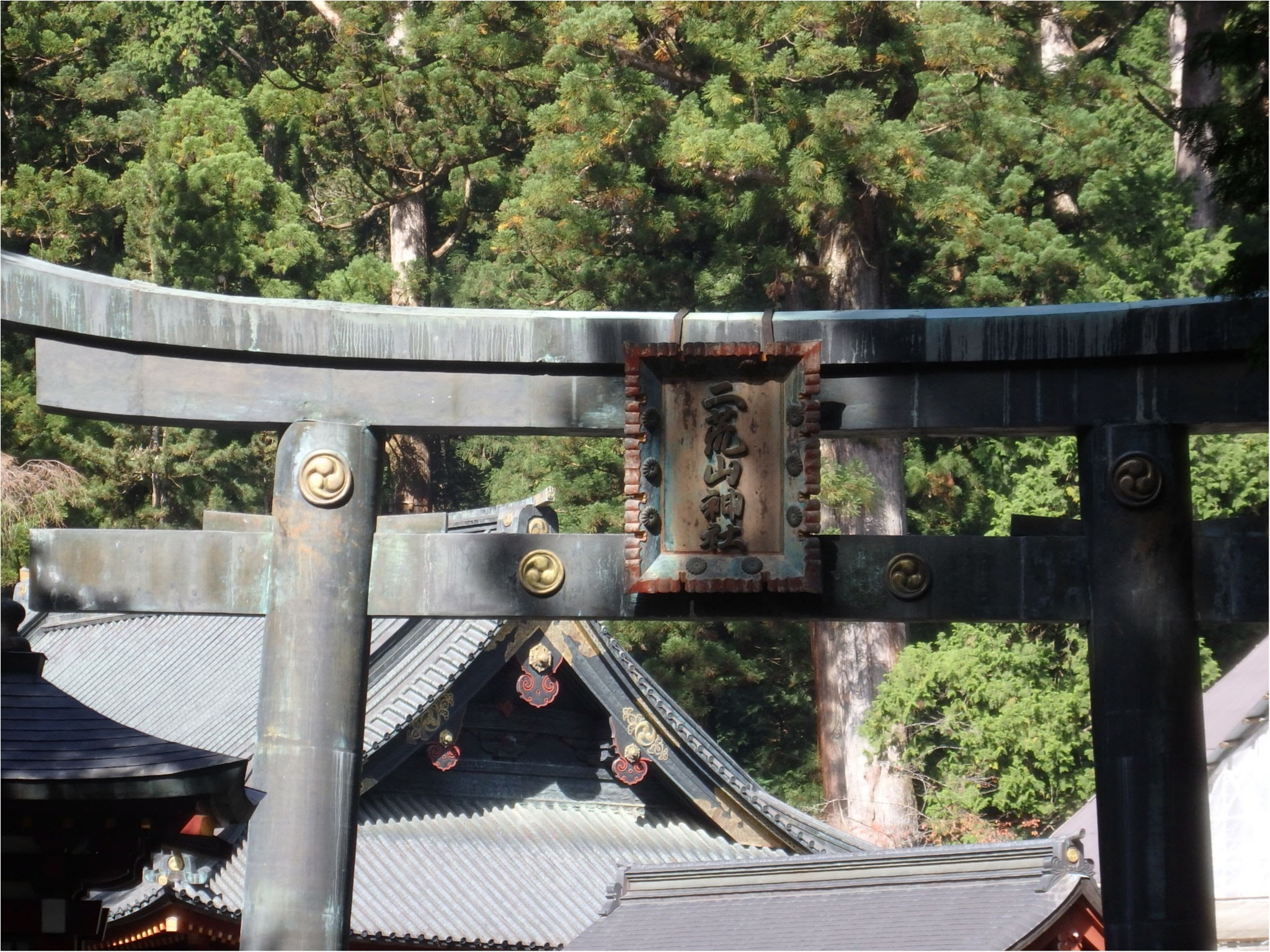 【知らなかった!】日本一楽しめる神社へ潜入してみた_18