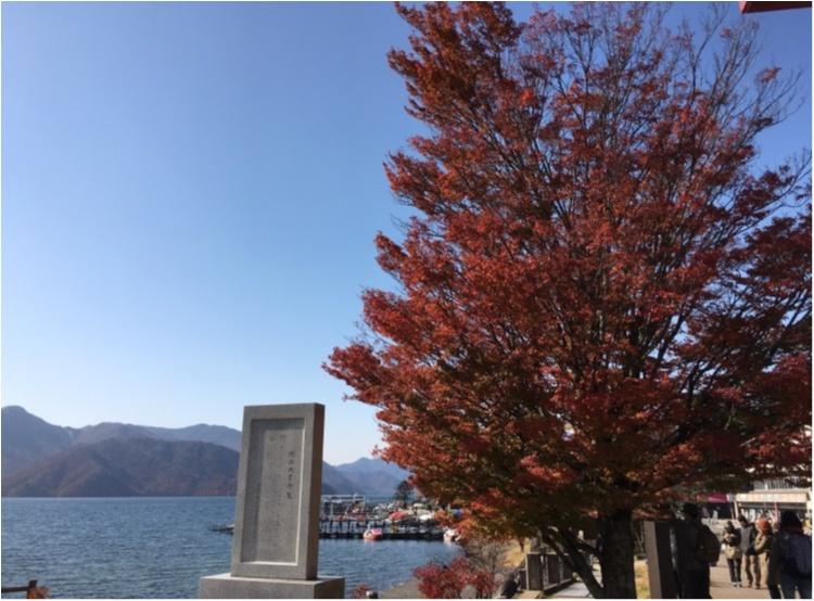 紅葉を見るならここに行くべし❤︎❢日帰り旅行ができちゃう♡絶景紅葉スポット♥◯◯に行ってきました♡ʾʾ_13