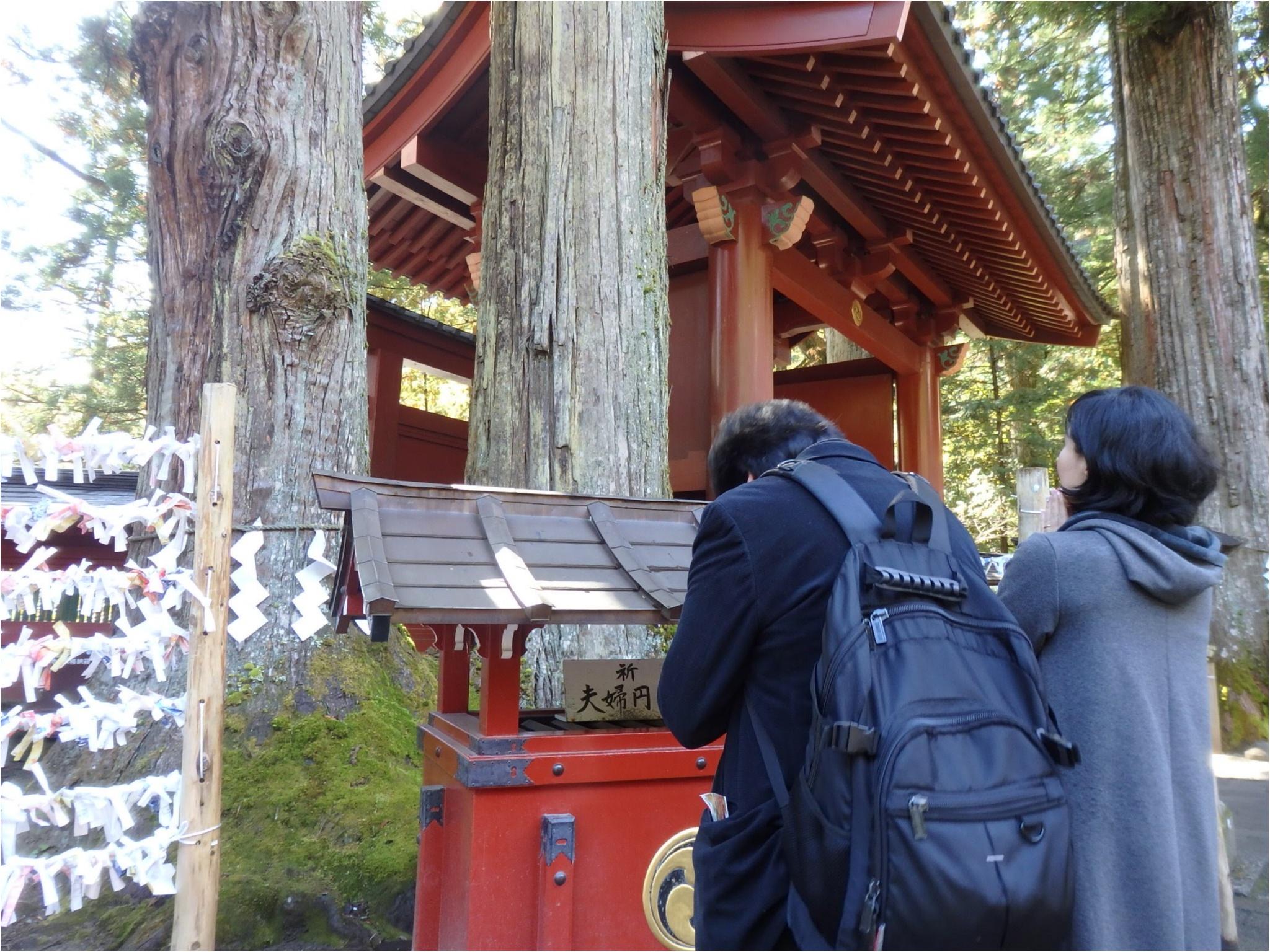 【知らなかった!】日本一楽しめる神社へ潜入してみた_11