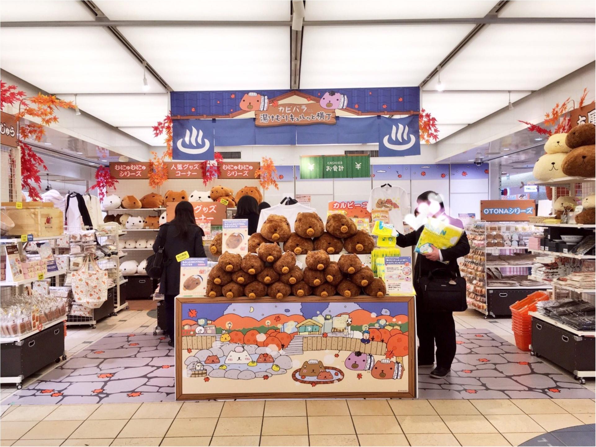 『カピバラさん×東京駅』作者チダケイコ先生サイン会&Calbeeプラスに行ってきました(*´ ˘ `*)♡_2