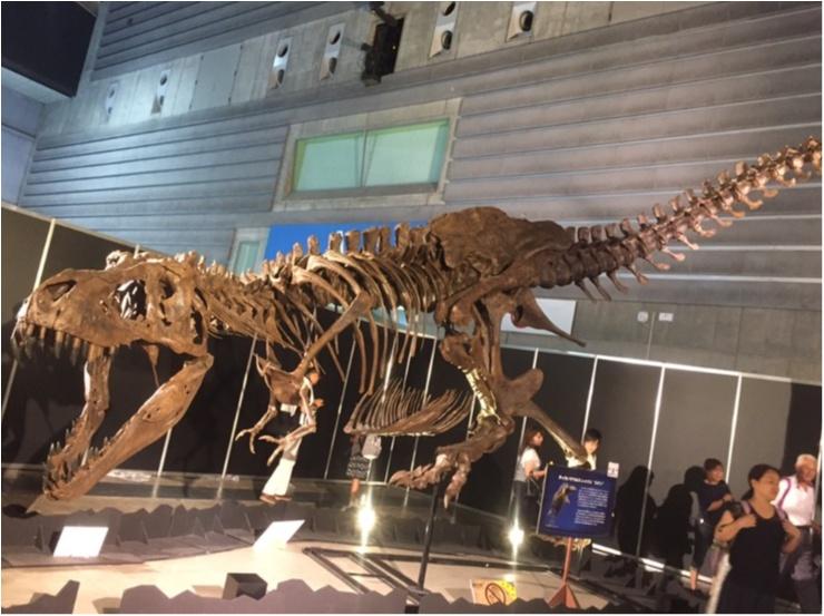 【9/3まで】大人も子供も楽しめる!!大迫力《横浜恐竜展2017》で動く恐竜の森を体験♪_9