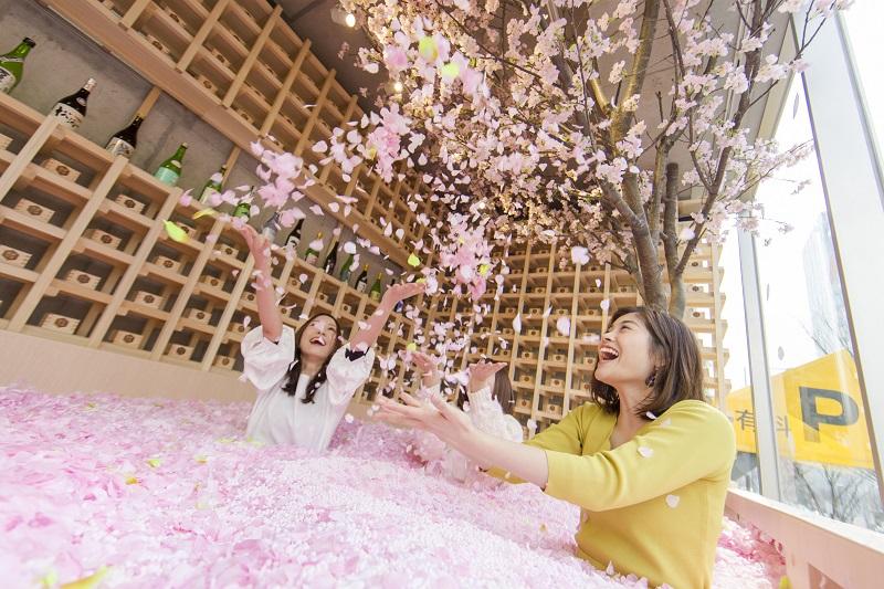 花びら120万枚の「桜プール」の中で乾杯! 表参道に「SAKURA CHILL BAR by 佐賀」登場。ブランド苺「いちごさん」も楽しめる♡【#桜 2019 15】_1