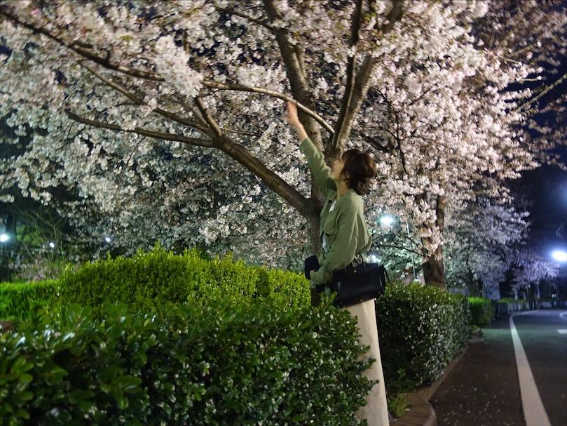 《アヤサンポ》お花見コーデや上下UNIQLOのプチプラコーデ!_1
