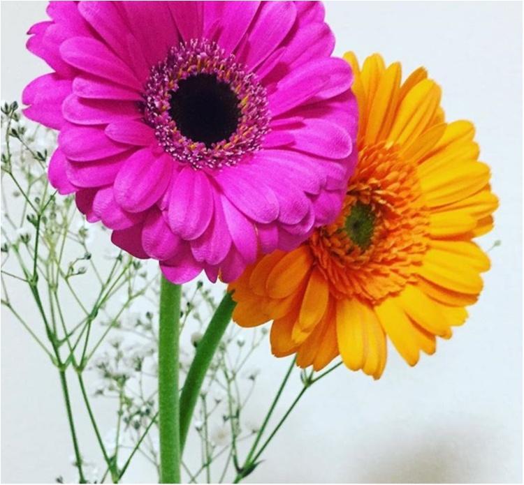 《花のある暮らし♡》春に向けてお家にお花を置いてみませんか♡?_1