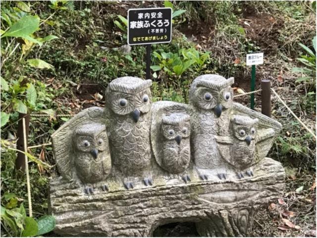 【パワースポット】栃木県の鷲子山神社へ運気アップに行ってきました♪《メディアで話題のフクロウ神社》_7_7