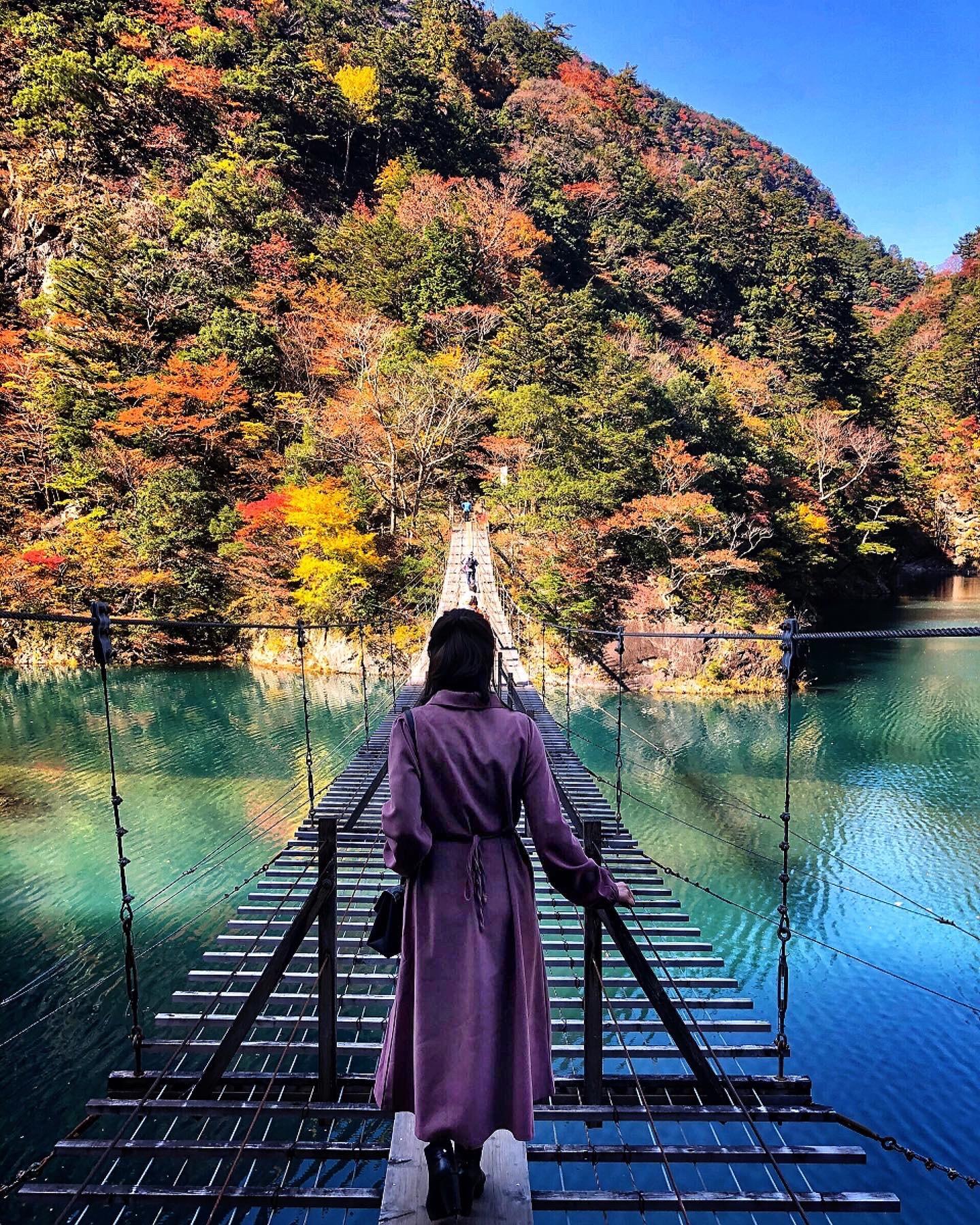 【#静岡】《夢の吊り橋×秋・紅葉》美しすぎるミルキーブルーの湖と紅葉のコントラストにうっとり♡湖上の吊り橋で空中散歩気分˚✧₊_8