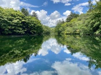 【女子旅におすすめ】往復5000円以下♡長野軽井沢に行く日帰りバスの旅!