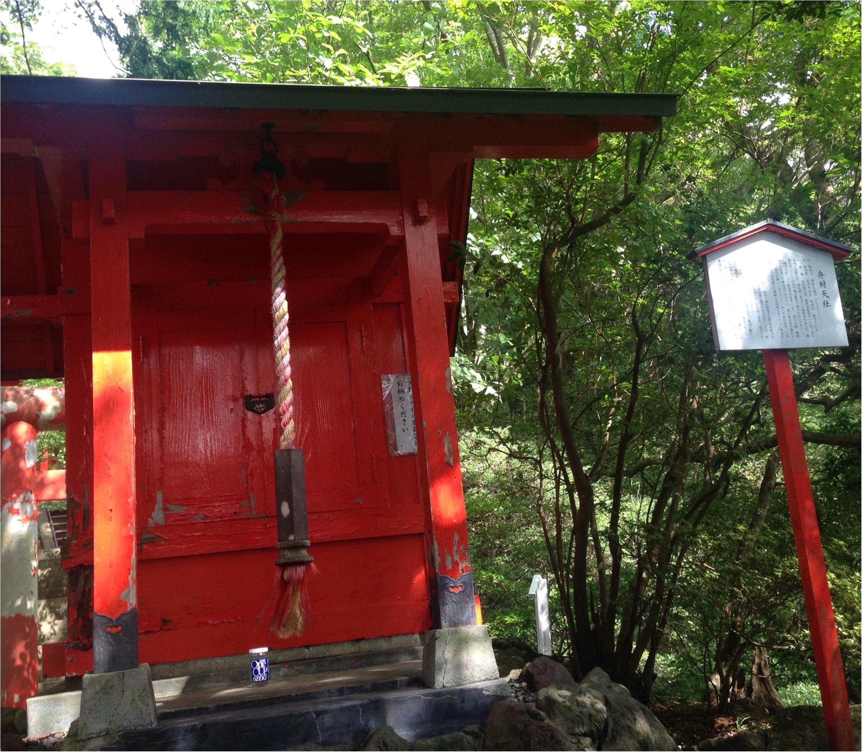いざ、参らん!箱根のパワースポット。縁結びの神&富士山の美味しい湧き水もタダで❤️_10