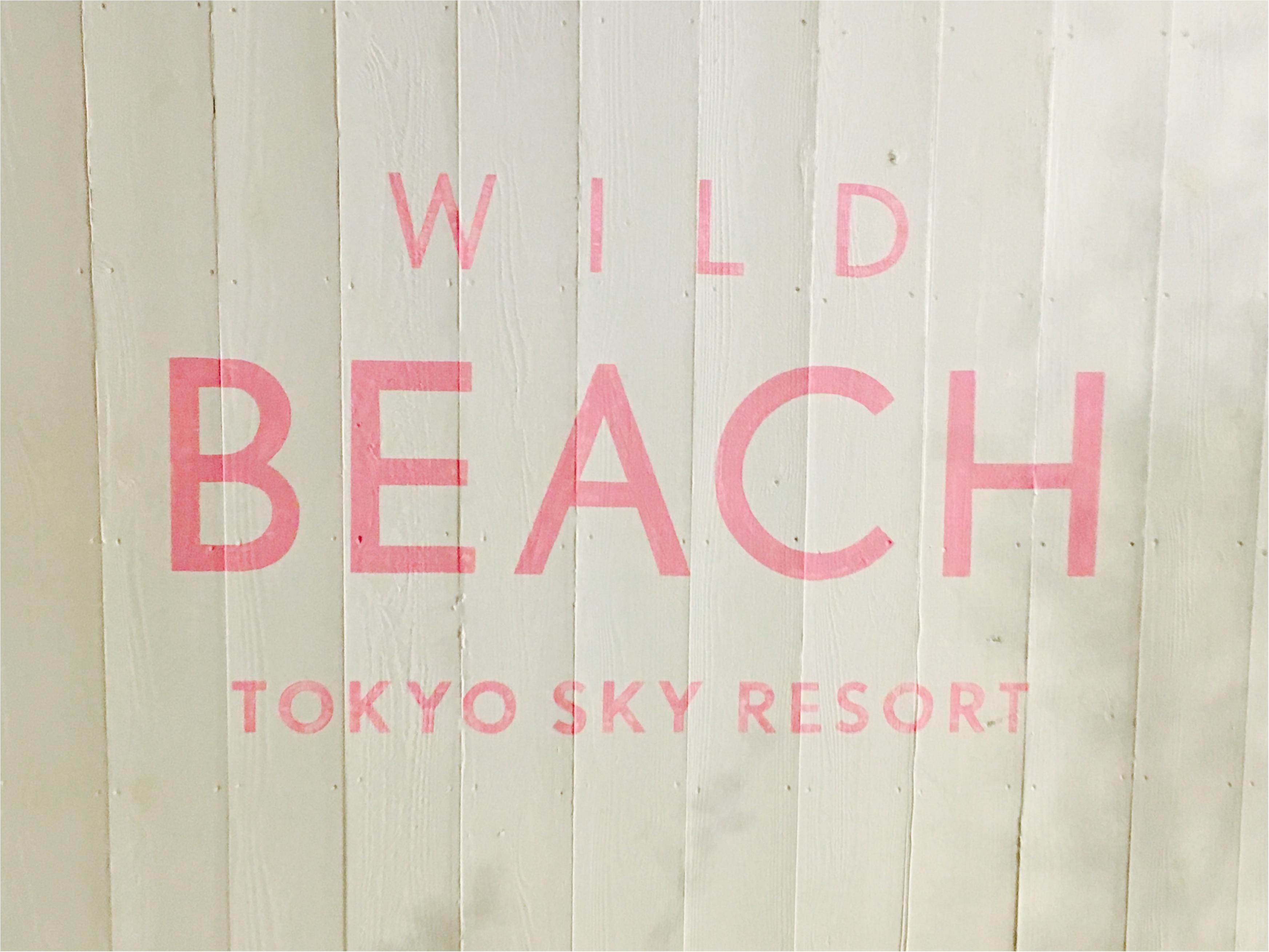 【おでかけ】新宿のWILD BEACHでリゾート気分を味わえるビアガーデンでBBQしてきました★_1