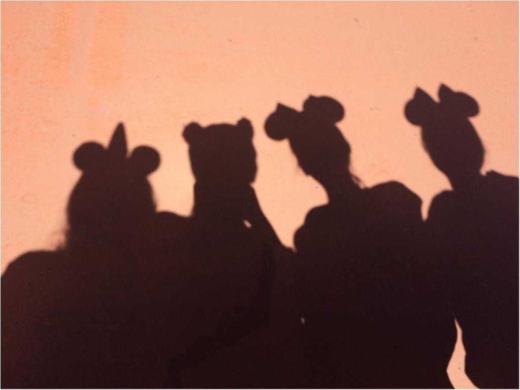 """【おでかけ】暑い『夏』こそ、"""" 夏ディズニー """" !!! 「ディズニー・サマーフェスティバル」に参加して、夏を満喫しよう!_11"""