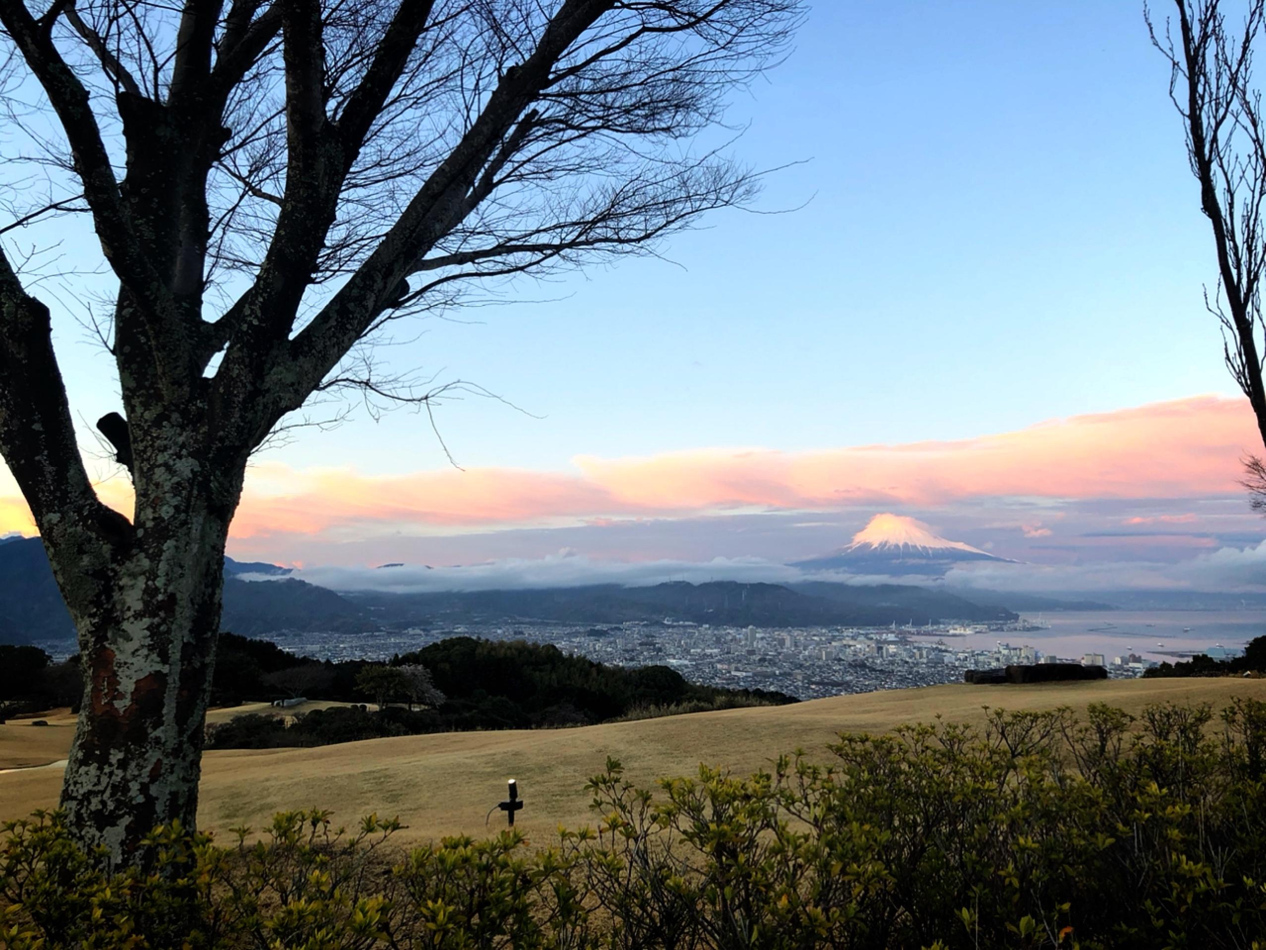 【#静岡】日本平ホテルでゆったりアフタヌーンティー☕︎風景画のような大パノラマが最高♡食後は広大な庭園をお散歩しました♩_8