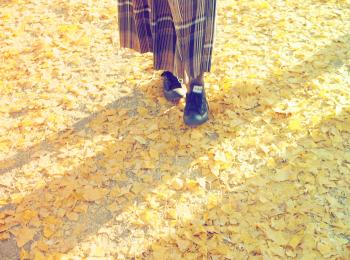 【秋の昭和記念公園】銀杏並木と紅葉サイクリング♩