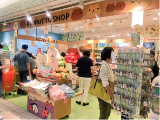 ♡数量限定♡カピバラさんの和菓子セットがかわいくっておいしい(*´ ˘ `*)♡_4