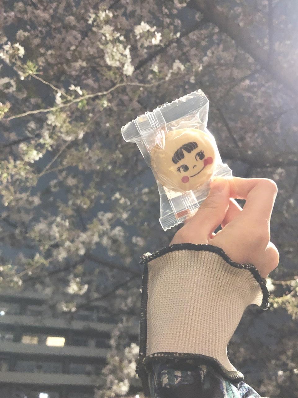 【おすすめ抹茶スイーツ】緊急事態宣言明けのピクニックの手土産はこれで決定!喜ばれること間違いなし、サンリオマカロン♡_4