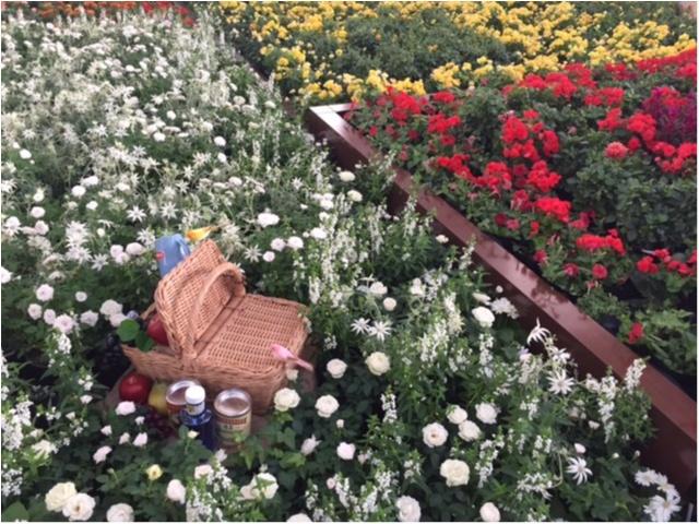 大阪駅がお花でいっぱいに!フラワー アート ミュージアム 2017_4