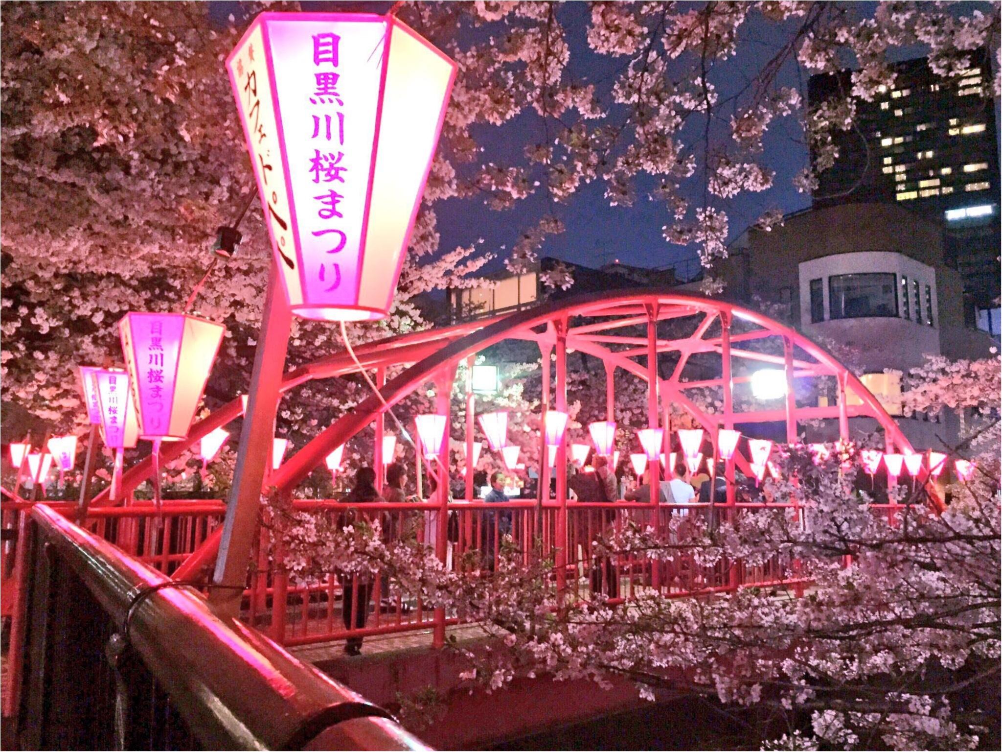 ♡りぃおすすめ!都内の夜桜スポットBEST3♡_2