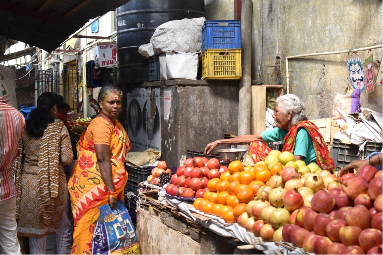 【インド旅】カレーが好きすぎて、本場へ旅してきました♪_8