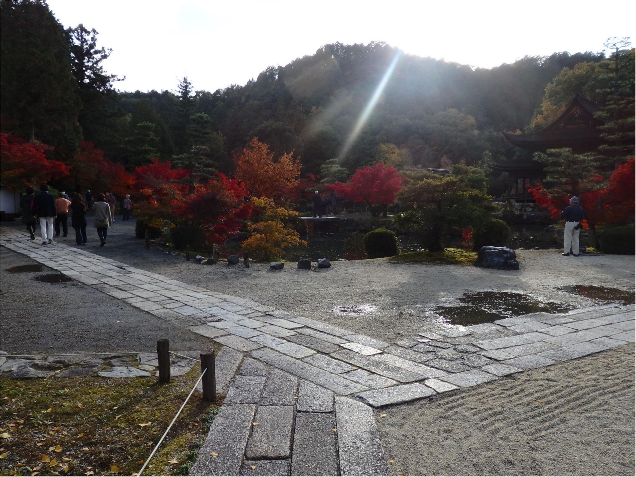【イケメン地蔵】話題の岐阜で秋を満喫♪_7