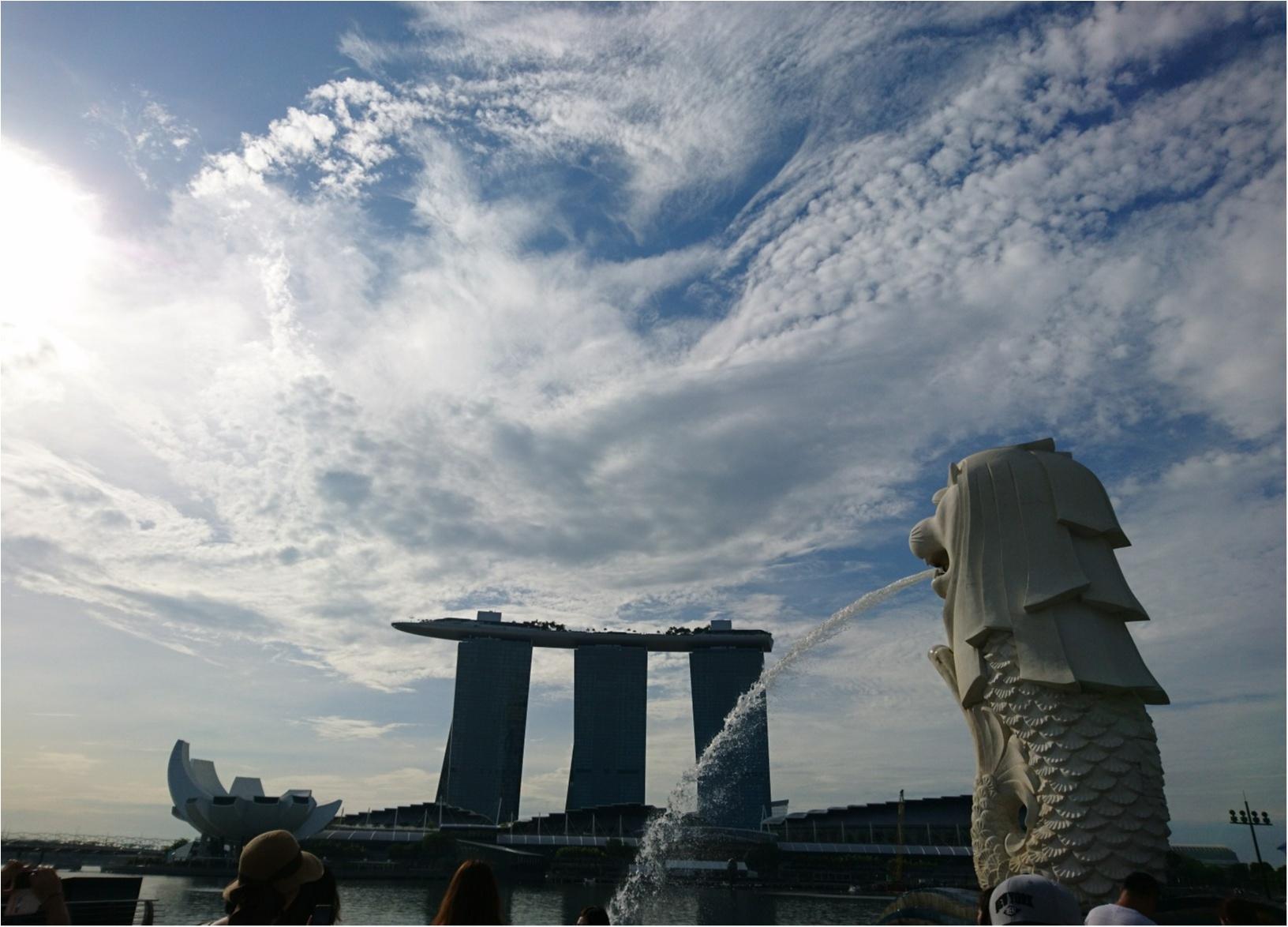 シンガポール女子旅特集 - 人気のマリーナベイ・サンズなどインスタ映えスポット、おいしいグルメがいっぱい♪_41