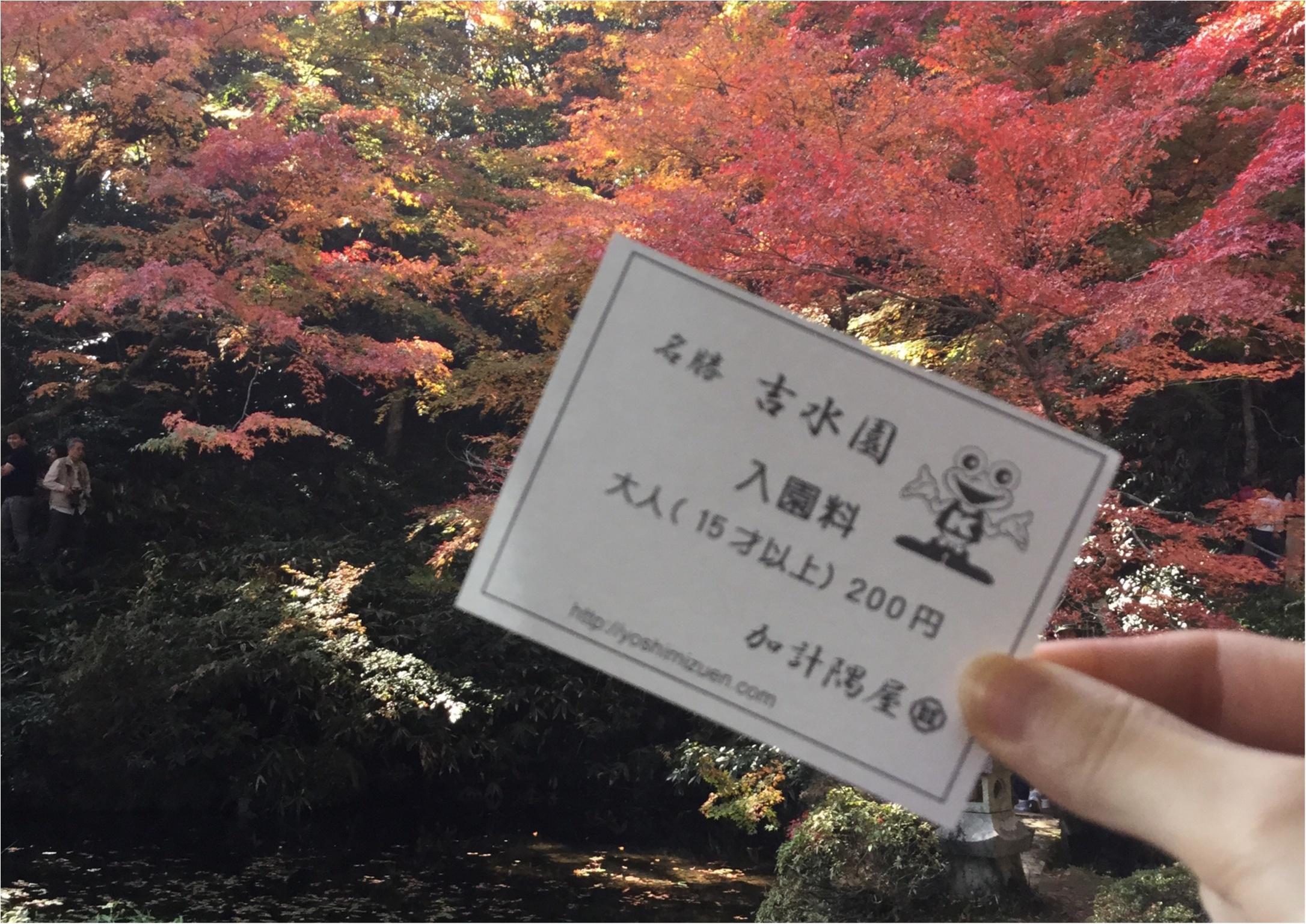 【#紅葉デート】春と秋に2週の週末しか一般公開されない!広島県を代表する紅葉スポット『吉水園』♡_4
