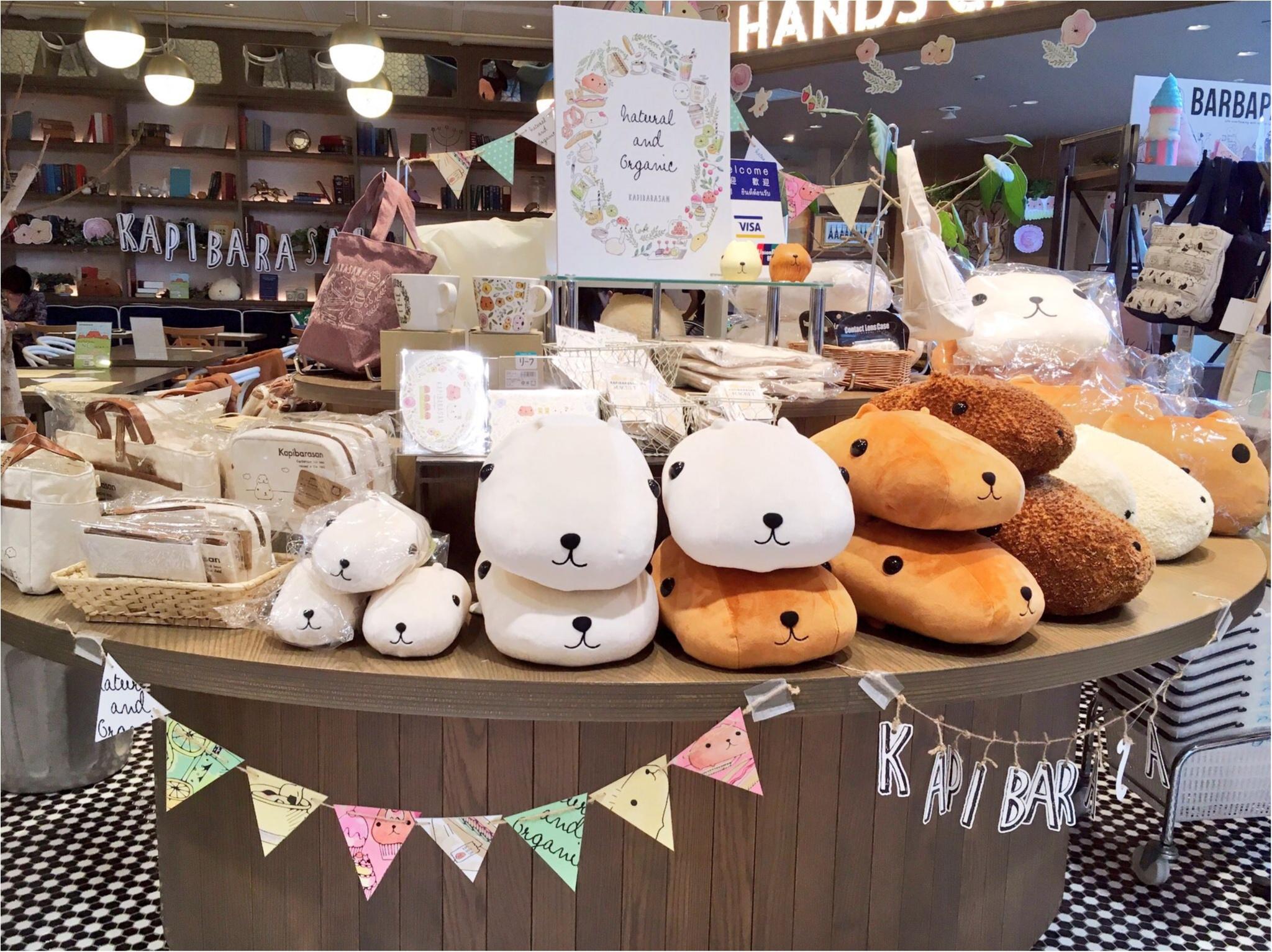 『KAPIBARASAN×HANDS CAFE』@東急表参道原宿店♡りぃイチオシメニューのご紹介(∗•ω•∗)♡_3