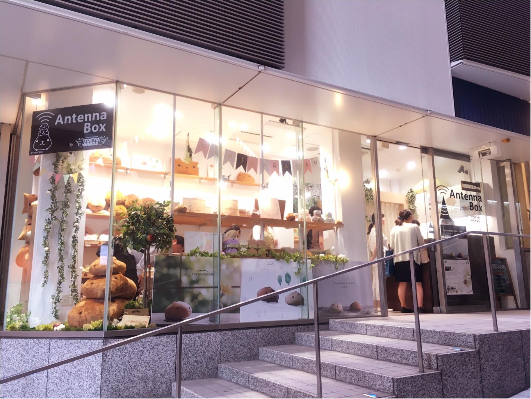 around27歳の私たちも…♡新宿ミロード出店中の「大人カピバラさん」に大注目♡_1