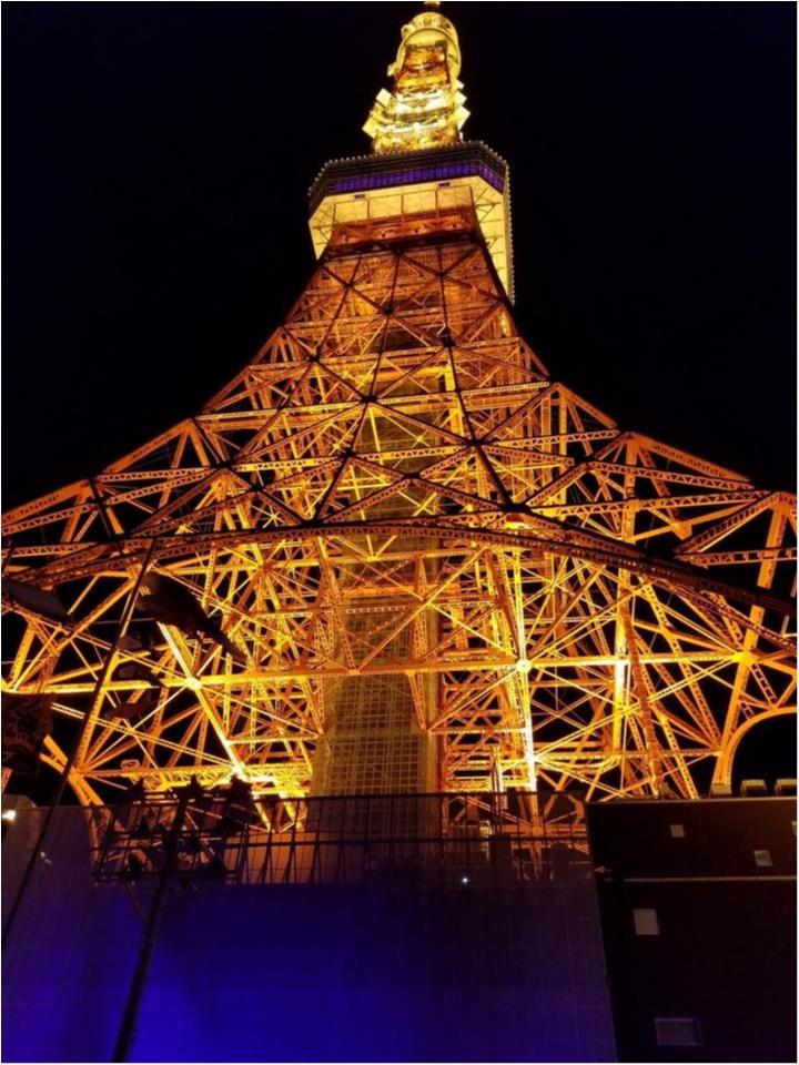 ☆世界でここだけ!結婚式with東京タワー☆_47