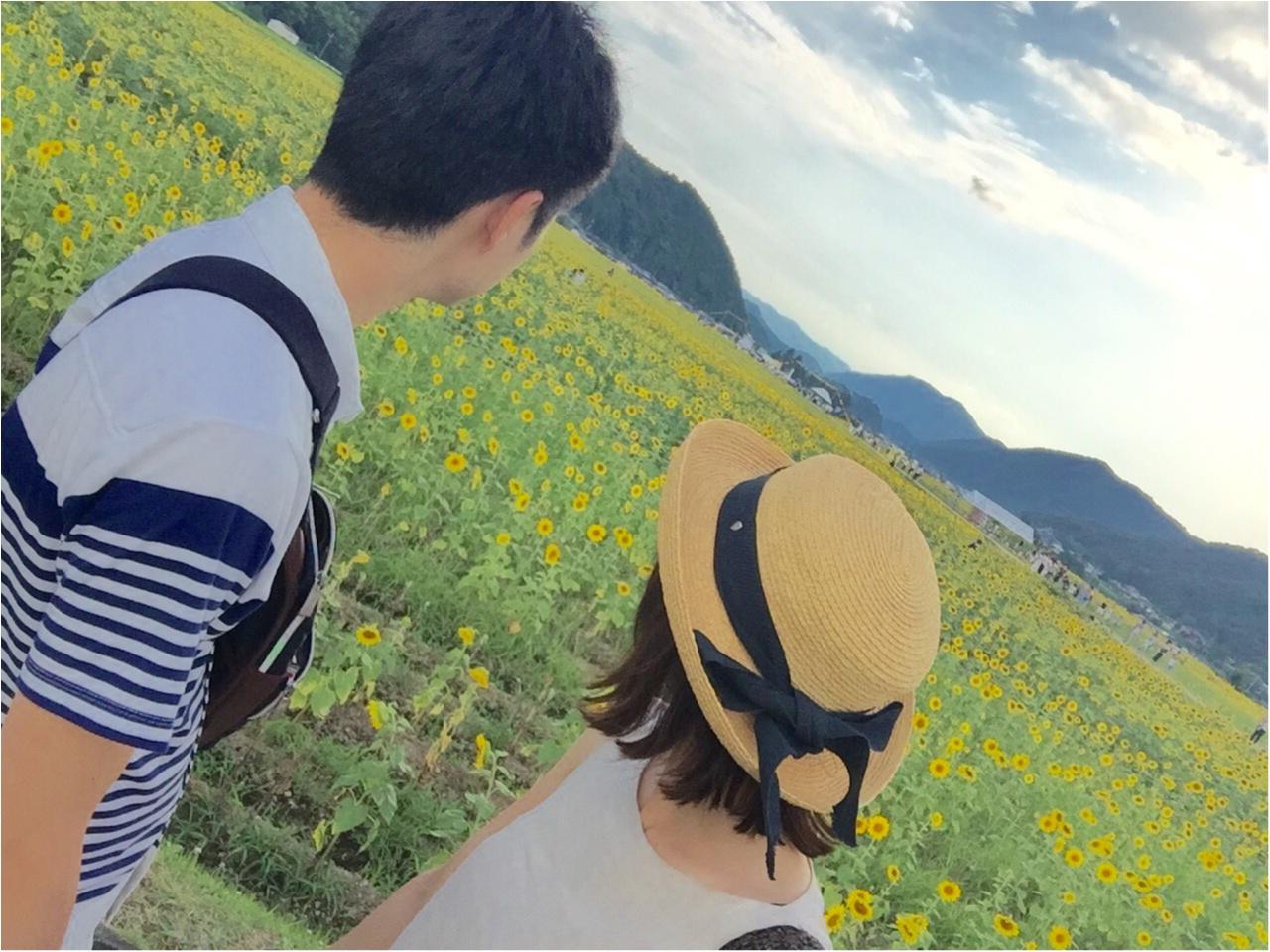 夏だ!8月だ!満開のひまわり畑へ!_8