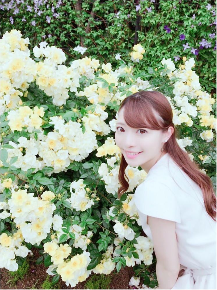 女の子の憧れ♡バラ園で素敵なひと時を、、(*^ω^*)_13
