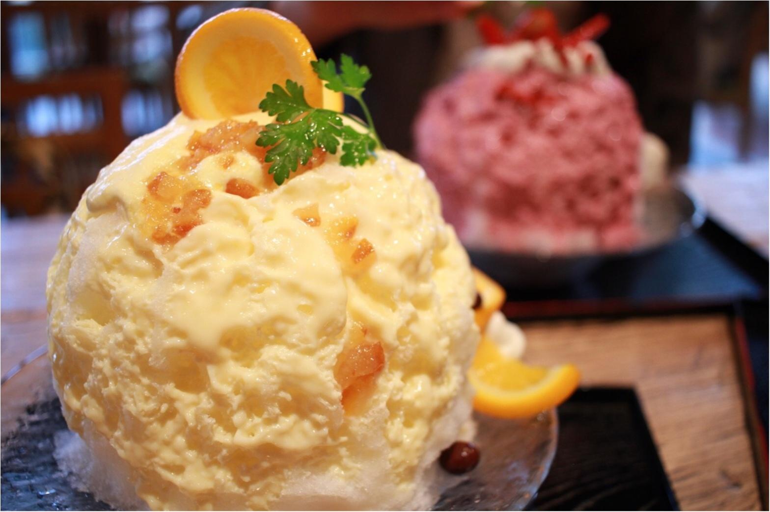 東京のおすすめかき氷特集 - 20代女子に人気のかわいくて美味しいかき氷店10選_11
