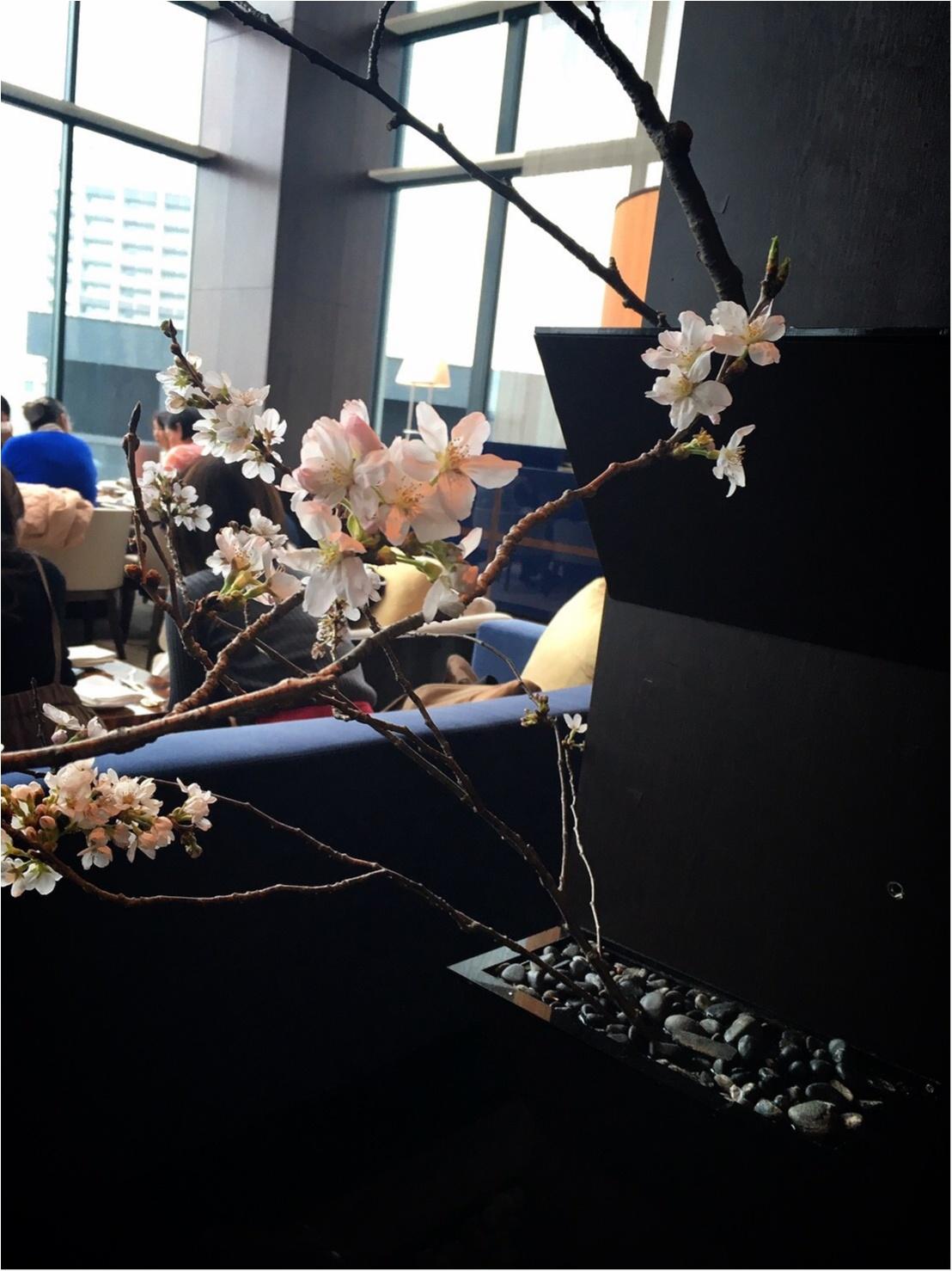 コンラッド東京【28階でお花見】桜アフターヌーンティーを_1