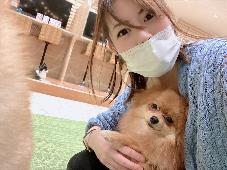 【わんこ好きさん必見!】puppy cafe RIO行ってきました♡癒されまくりスポット!_2