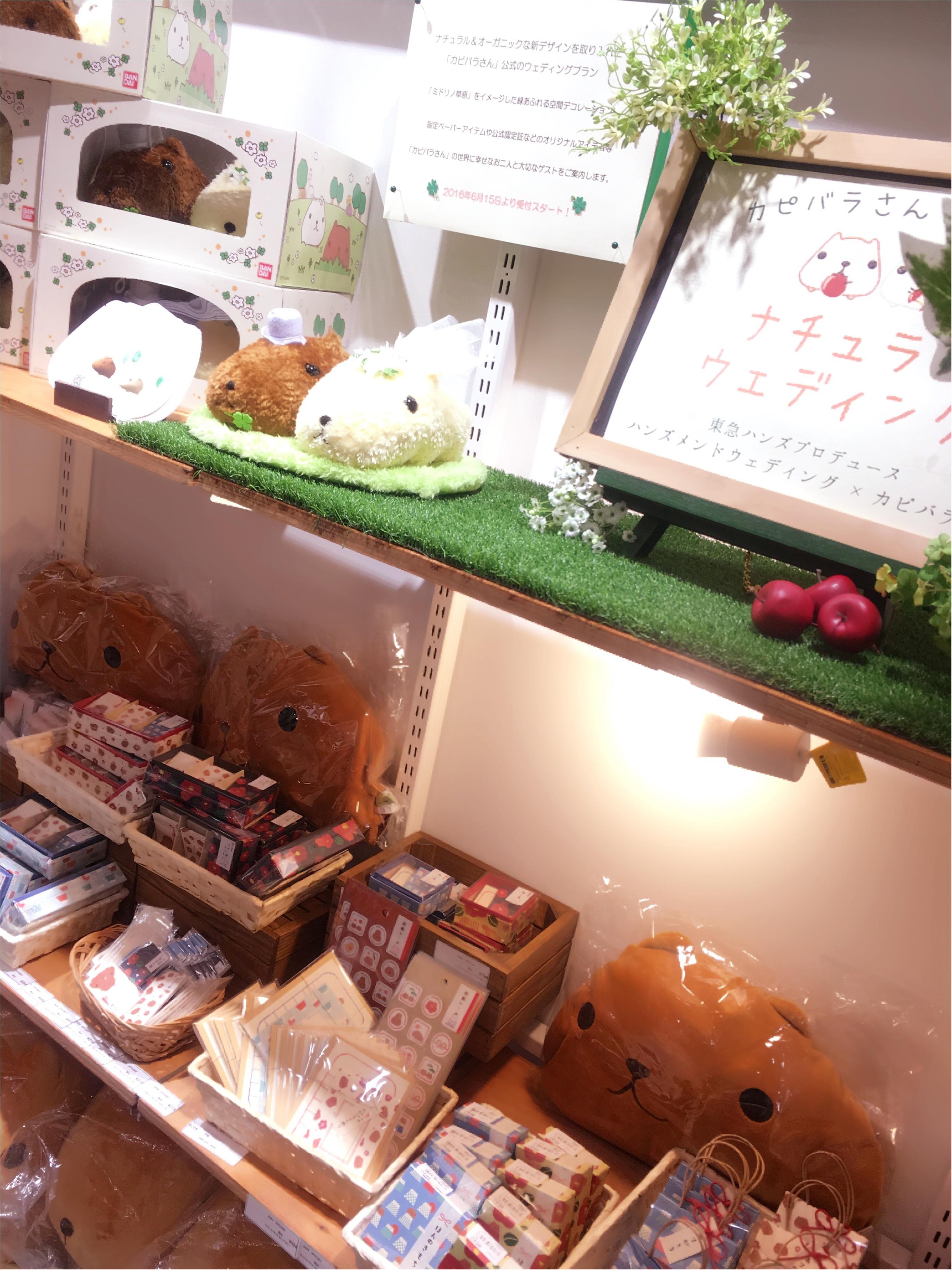 around27歳の私たちも…♡新宿ミロード出店中の「大人カピバラさん」に大注目♡_2
