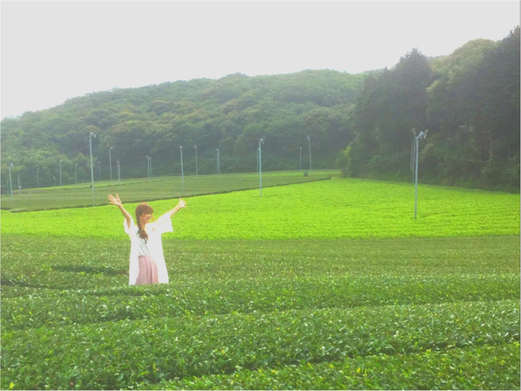 メロン好きは必見♡【名倉メロン農場】のメロンづくしのカフェに行ってきました♡_1