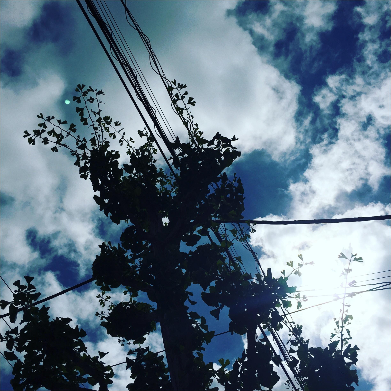 夏の記憶が蘇る✨✨この夏の《*空の写真*》_9