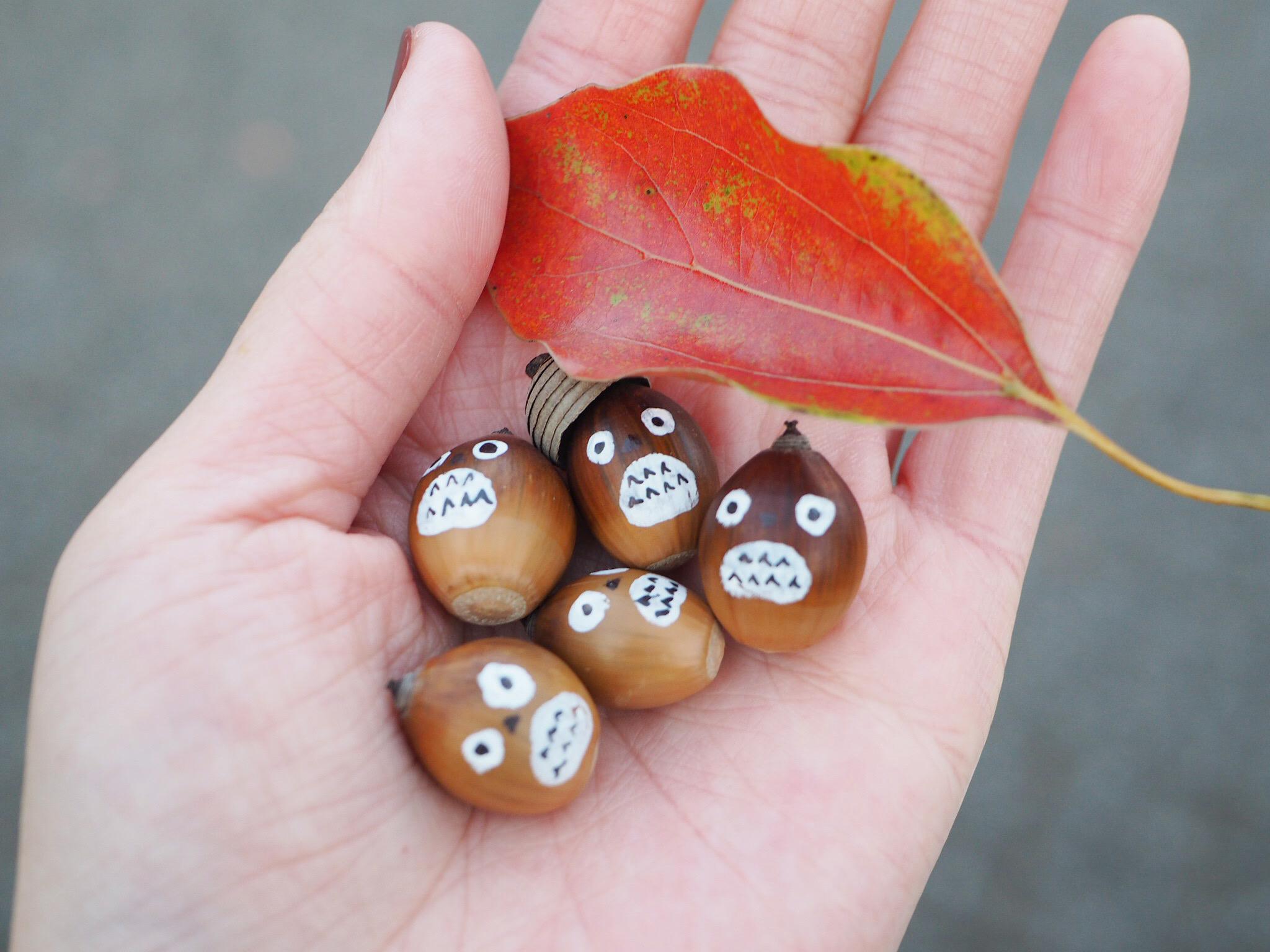 【秋の昭和記念公園】銀杏並木と紅葉サイクリング♩_11