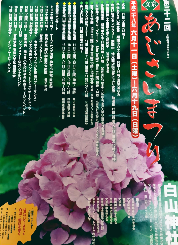 【今が見頃!】6月のおでかけは紫陽花まつりがおすすめ*写真映えするコーデのポイントも♡_1