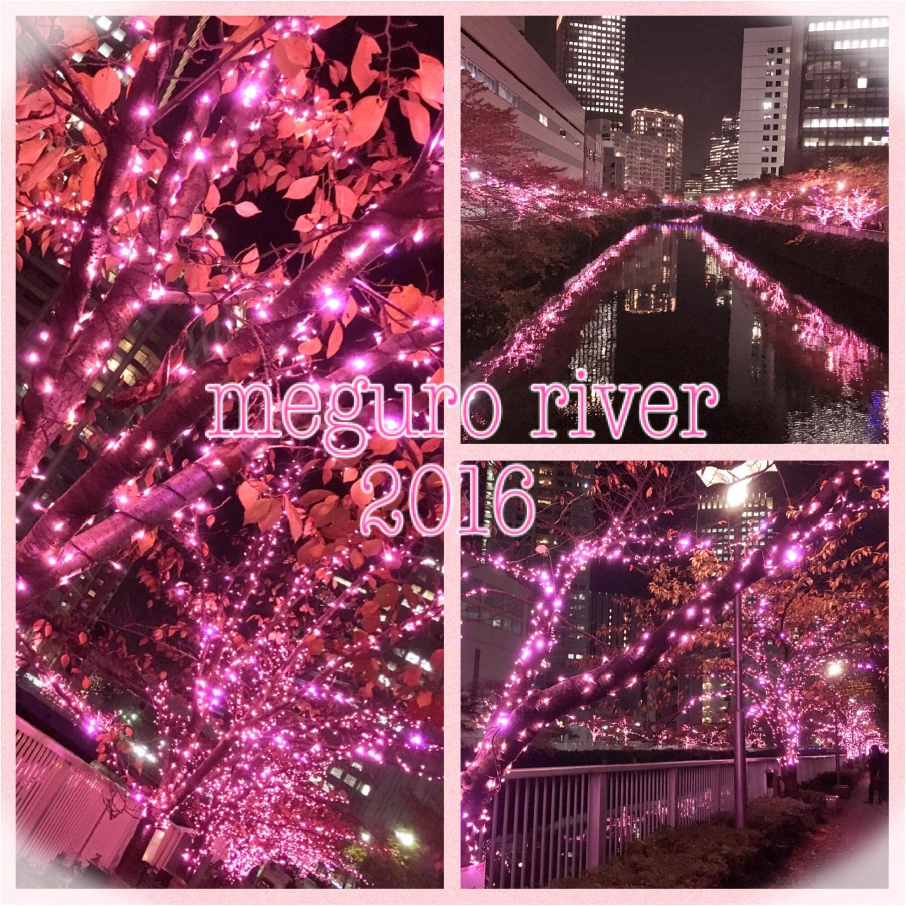 『目黒川』に『冬の桜』が咲きました(*°○°*)♡最新の『環境にやさしいイルミネーション』って???_1
