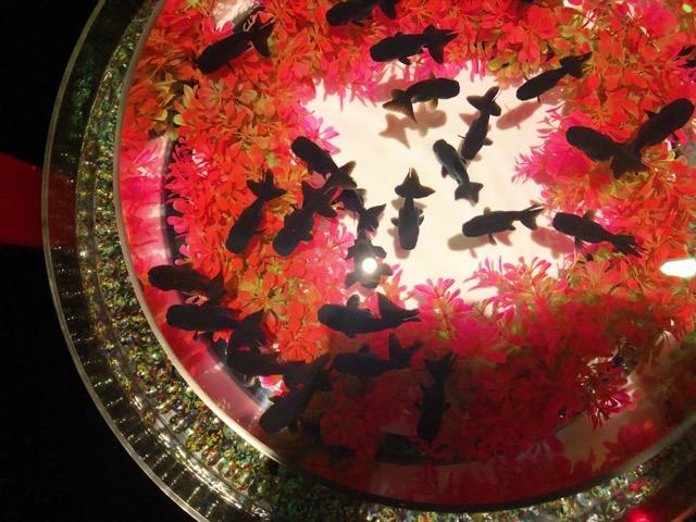 【日本橋】アートアクアリウム2019に行ってきました♡【ファンタジーの世界】_8