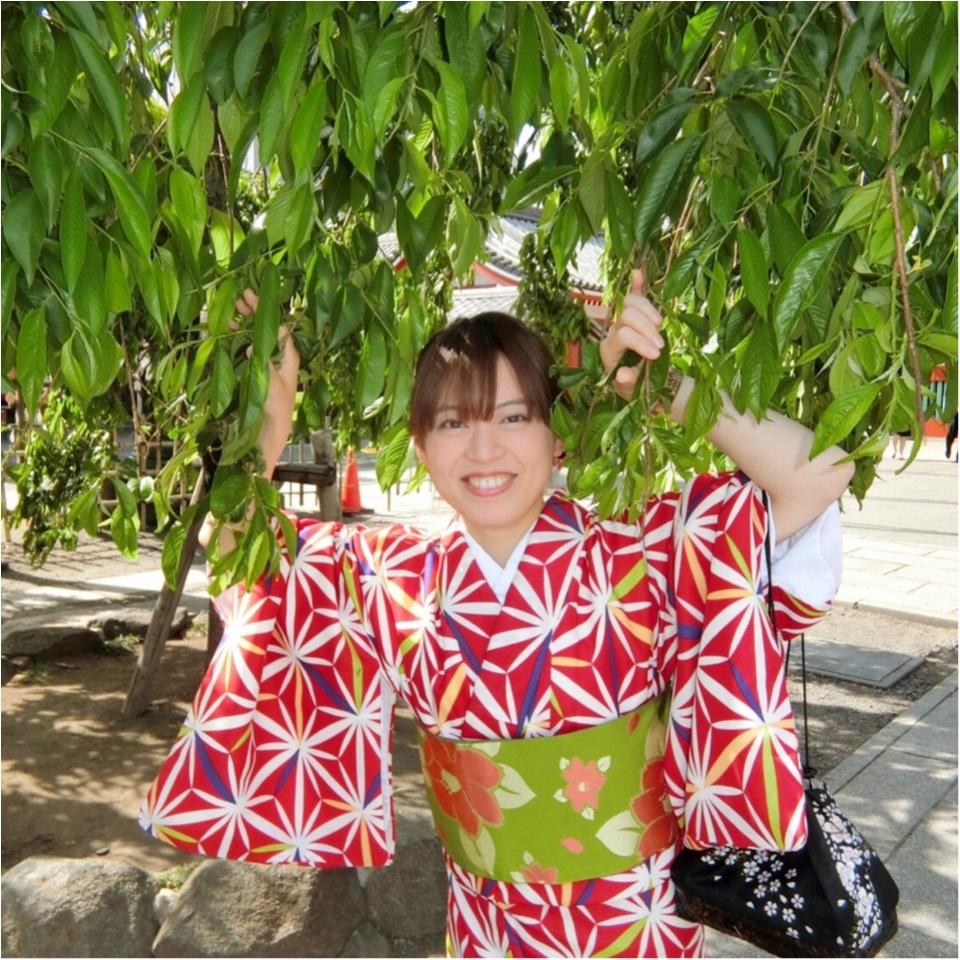 《小物・かんざし付きで¥2,900!》レンタル着物で浅草散策してきましたっ♡_4