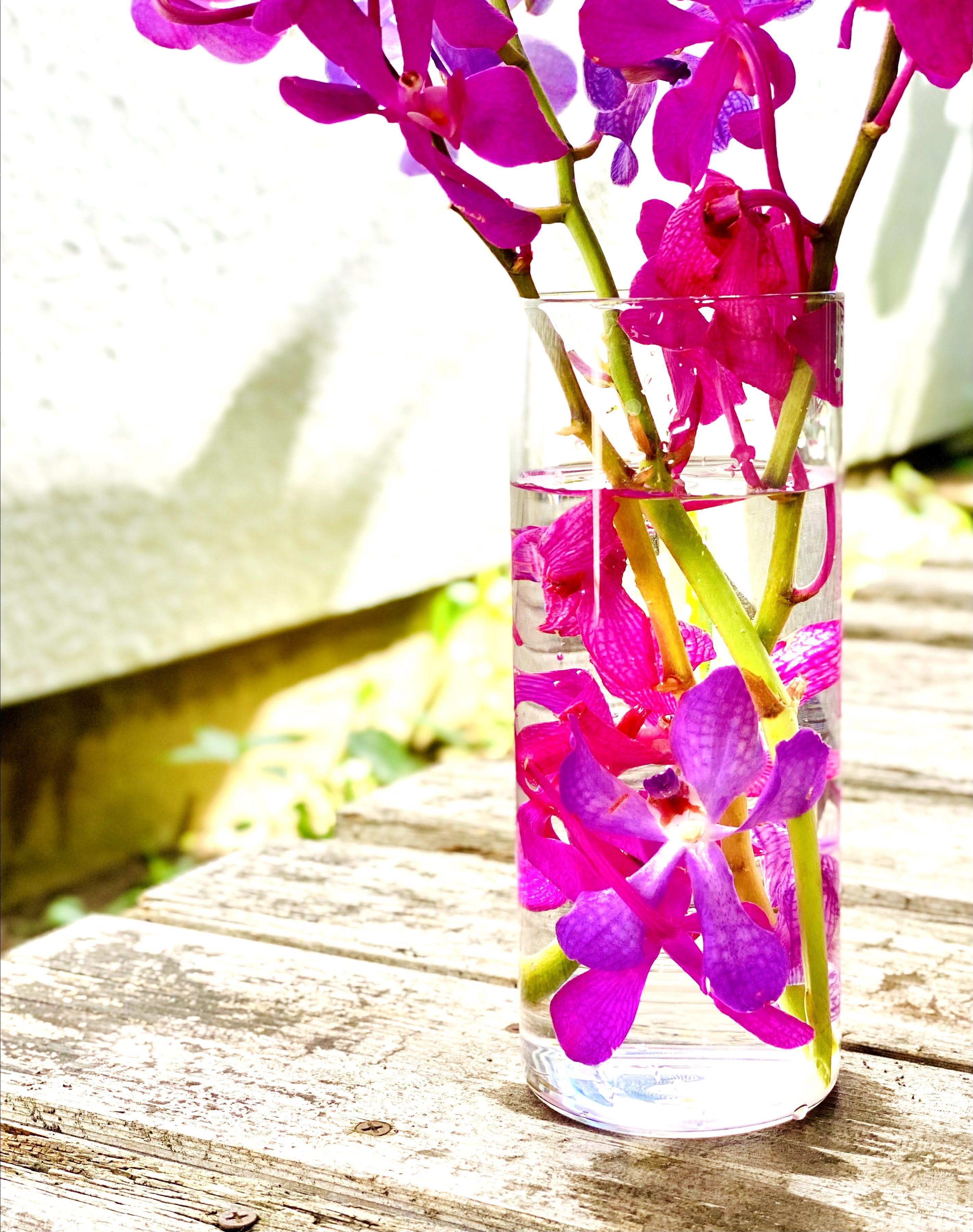 モカラの花瓶にお花を入れてアクアリウム風に楽しむ