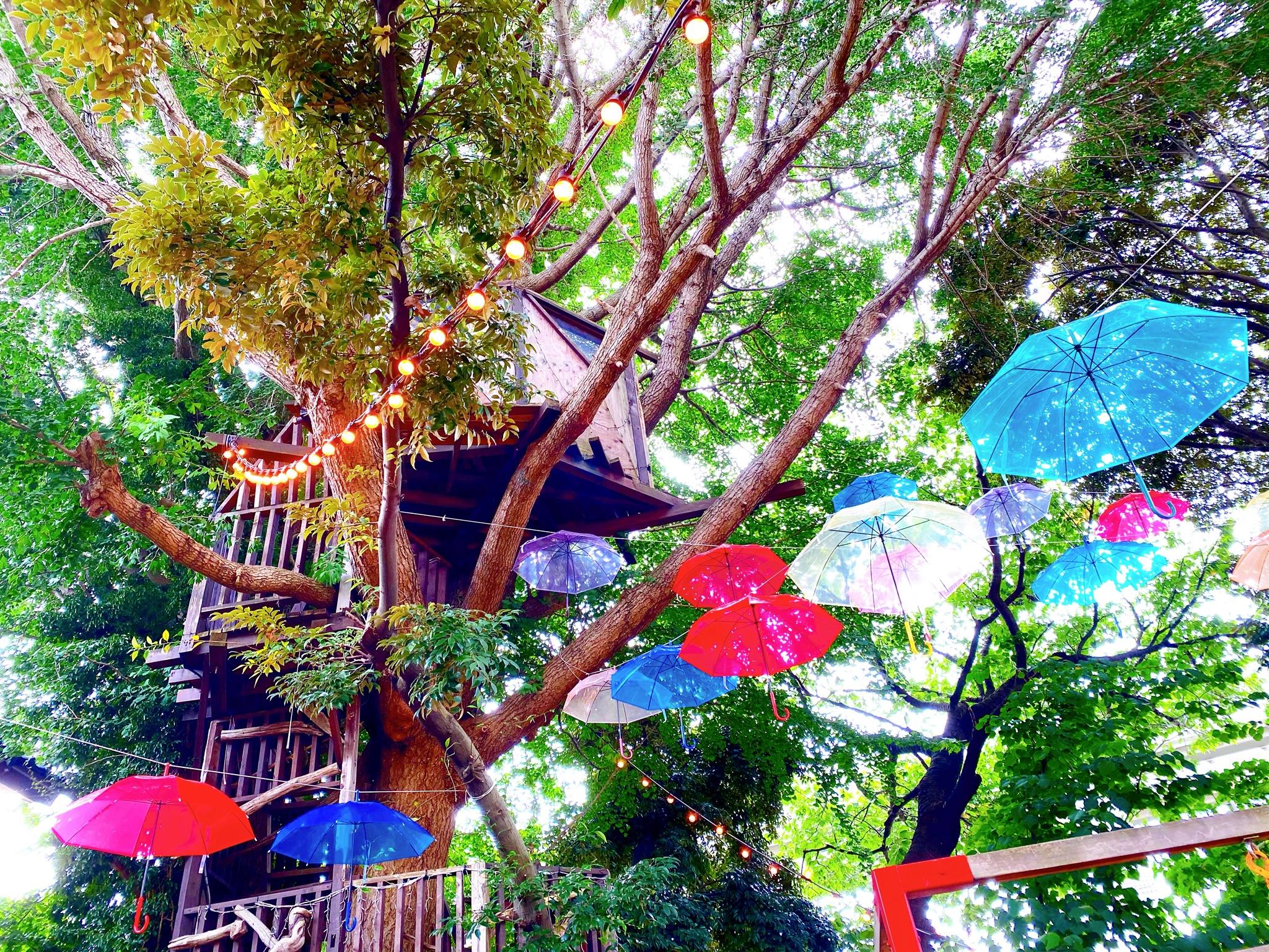 【階段を登ると異空間!】作り込まれた世界観 椿森コムナ_1